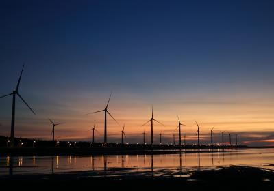 A wind farm harvests energy for electricity generation.